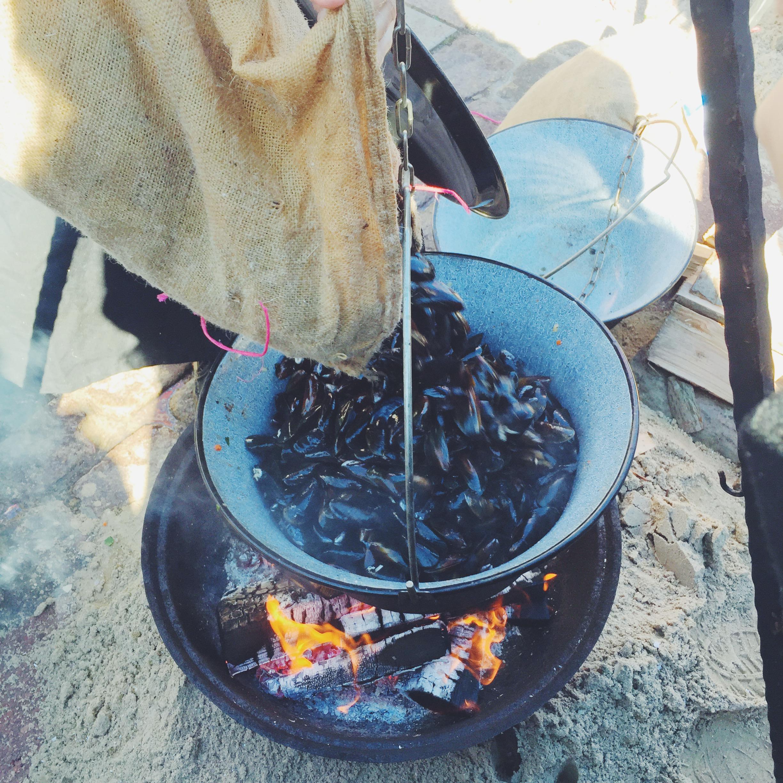 muslingehøst festival
